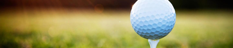 Piłka golfowa na polu Lisia Polana